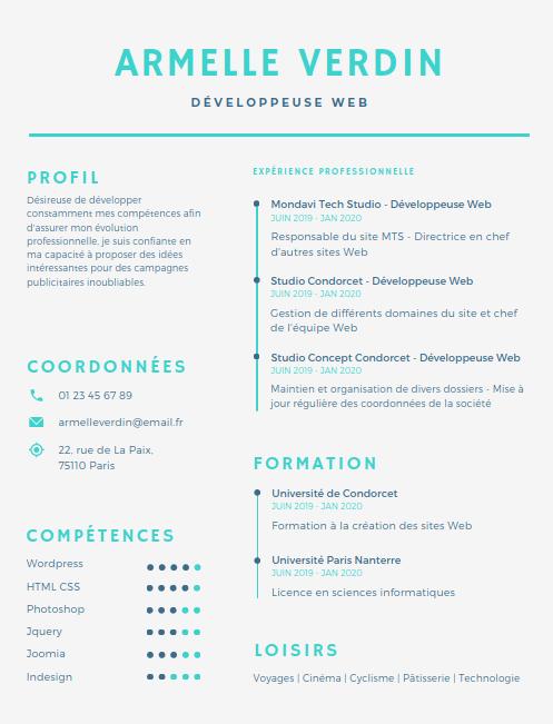 CV développeur avec barres de progression